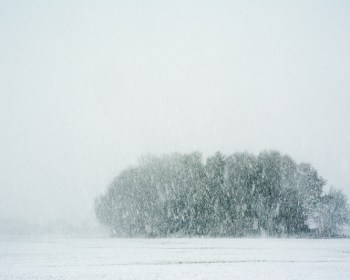 Door voldoende ruimte om het bosje te laten benadruk je de leegte van het sneeuwlandschap.