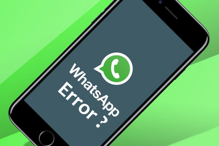 Cara Mengatasi WhatsApp Error