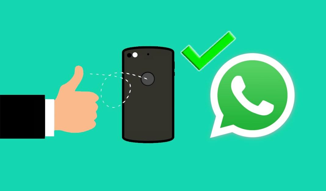 Cara Mengaktifkan Fingerprint Pada WhatsApp Tanpa Aplikasi Tambahan