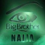 Double Wahala: Photos, Name, Age & Residence of Big Brother Nigeria Housemates