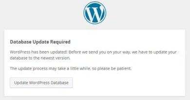 database-update-wordpress