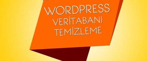 wordpress veritabanı temizleme