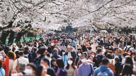 Japonya'da Yalnızlık Bakanlığı Kuruldu!