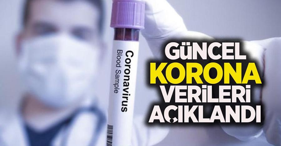 Türkiye'nin Günlük Koronavirüs Tablosu Açıklandı!