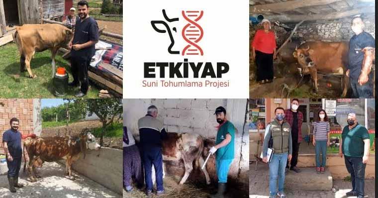 Giresun'da Suni Tohumlama Projesi ETKİYAP Başladı
