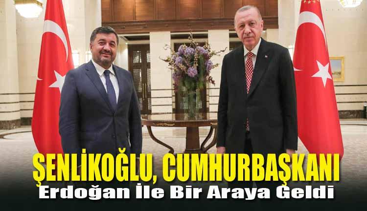 Şenlikoğlu, Cumhurbaşkanı Erdoğan İle Bir Araya Geldi
