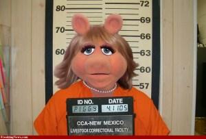 Свинският грип тръгна от Мексико и се разпространи из целият свят.