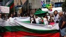 Bulgarian Protest Seattle Aug 11 2013 2