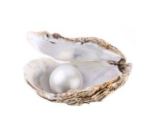 перла