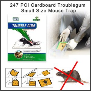 0247 PCI Cardboard Troublegum Small Size Mouse Trap-1pc - Bulkysellers.com