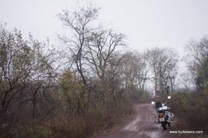 royal enfield classic 500 with a tall backrest