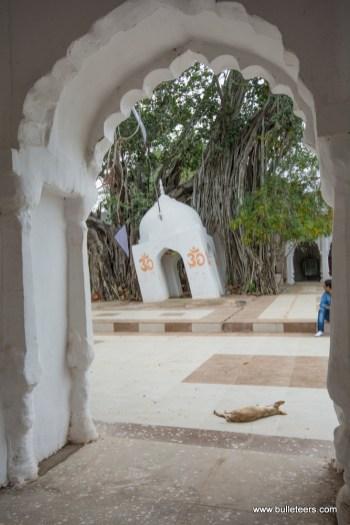 seondha-kanhargarh-bulleteers-0116