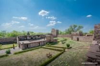 surwaya-shivpuri-2369