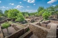 surwaya-shivpuri-2429