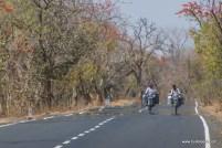 palpur-kuno-road-2479