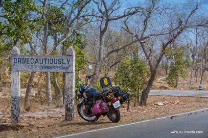 palpur-kuno-road-2593