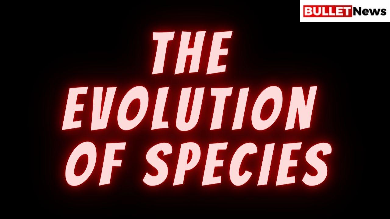 Mini-brains: The Evolution of species - Bullet News