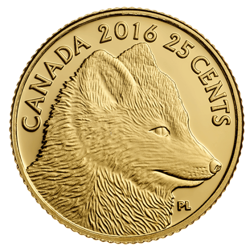 One is the hunter—the other, the hunted. This four-coin series explores the predator and prey relationship of the Arctic fox and the Arctic hare in Canada's far North, where the harsher climate necessitates unique adaptations that have set these two species apart. The first coin focuses on the features of a prolific hunter, as seen in this life-like depiction of an Arctic fox. SPECIAL FEATURES: Debut of a brand new series that brings predator and prey face to face! First in a gorgeous four-coin series that explores the predator and prey relationship of the Arctic fox and the Arctic hare, with each animal depicted in a traditional pose on one coin then re-interpreted in a Haida art style on another!  Smallest gold coin! The coin's 11-millimetre diameter is the smallest sized gold coin produced by the Royal Canadian Mint.  Seeing is believing! The reverse boasts an astounding amount of minute detailing on such a small scale—a testament to the exquisite craftsmanship of the Royal Canadian Mint!  Crafted from 99.99% pure gold.  Also available part of a four-coin subscription. Case features a magnificent case complete with a built-in magnified display. DESIGN: The reverse design by Canadian artist Pierre Leduc features a side-profile view of an Arctic fox (Vulpes lagopus), depicted here in the style of a traditional wildlife portrait. Meticulous engraving recreates the fox's features with extraordinary precision on such a small canvas, giving it a life-like quality that beautifully captures the texture of its thick, winter pelt. Standing still in the wintry landscape, the fox's small, rounded ears are alert as it quietly steadies its gaze on its prey beyond the image field.