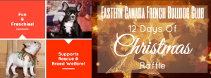 Eastern Canada French Bulldog Club 12 Days of Christmas Fund Raiser