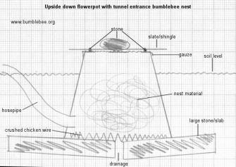 bumblebee nest box