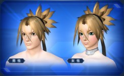 曙光結い Dawnlight Up-tied Hair