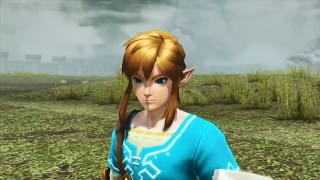Link's Breath of the Wild Outfit in PSO2
