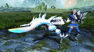 Monster Hunter Weapon Camo C