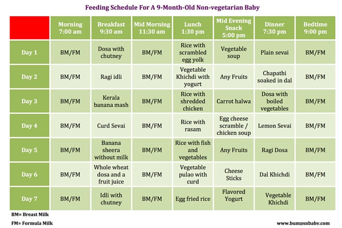 9 Month Old Feeding Schedule With Free Printable Food Charts