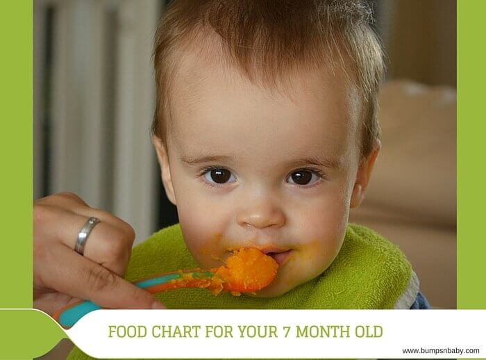7 month old feeding schedule