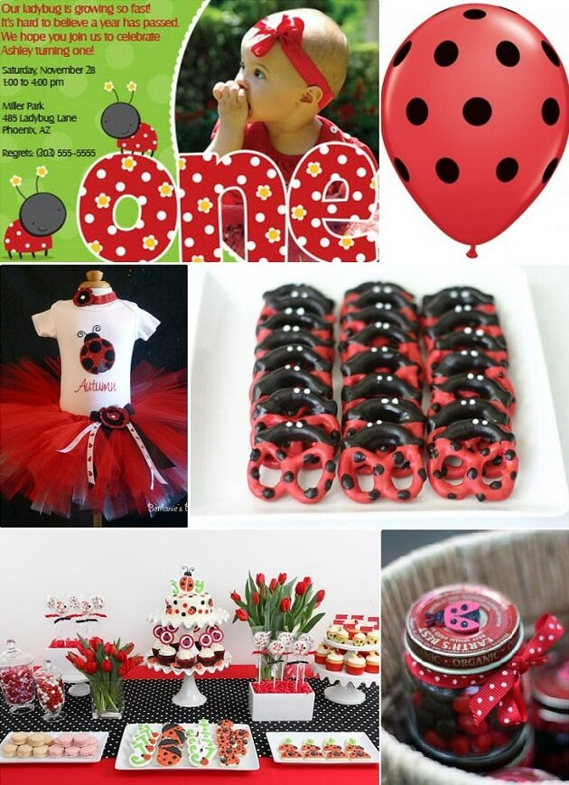 lady bug birthday party themes for girls