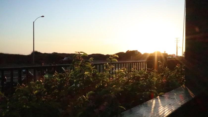 neptune's net sundown sonnenuntergang außenterrasse terrasse blumen sonne sun roadtrip