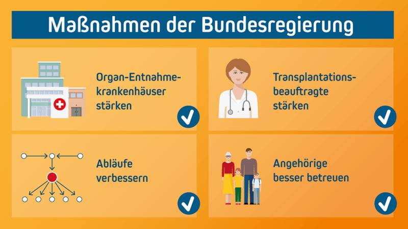 Die Grafik zeigt die Maßnahmen der Bundesregierung zur Verbesserung der Strukturen bei der Organspende: Die Organ-Entnahmekrankenhäuser sollen gestärkt, die Abläufe verbessert, die Transplantationsbeauftragten gestärkt und Angehörige besser betreut werden