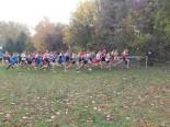 Start des Crosslaufs Männer Langstrecke 11,5km.