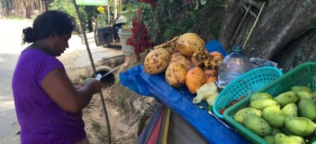 Zwischendurch eine frische Mango