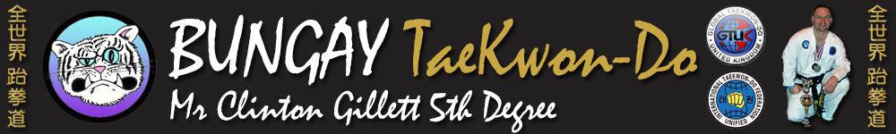 Learn the martial art of Taekwondo at Bungay TaeKwonDo Club, GTUK-East, Norfolk, Suffolk, Waveney