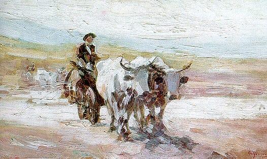 Oxen Car