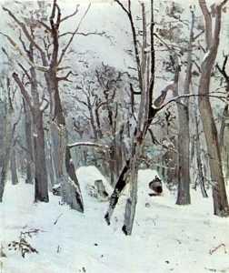 28 - Padure-iarna