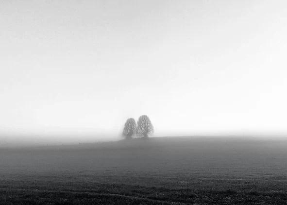 Tweezaamheid - Selina De Maeyer