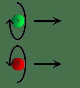 Elicita neutrini