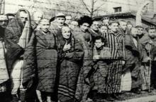 auschwitz_1945_(wikimedia)