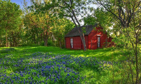 casa-foresta_(Bill-Gracey_NC-ND)