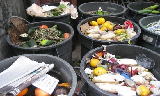 foodwaste_cibo_rifiuti_(wikipedia) spreco