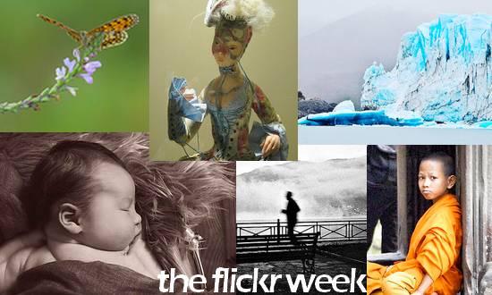 fotoflickrweek