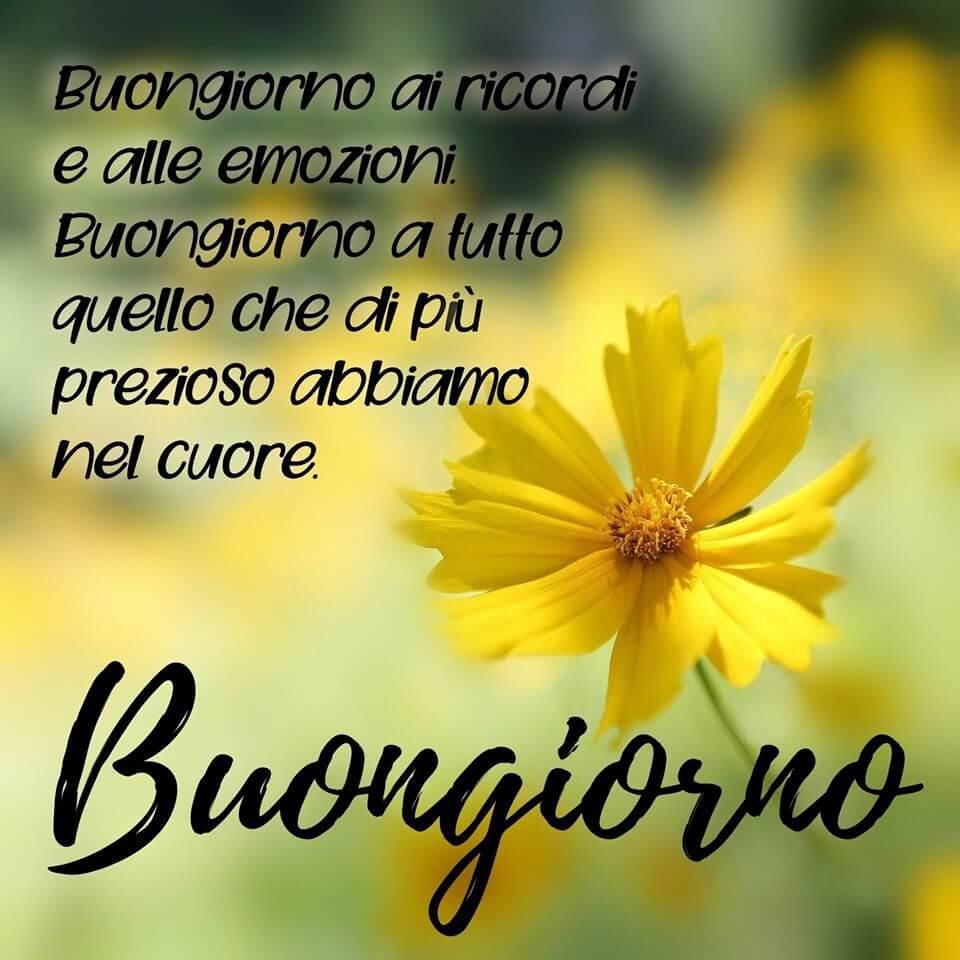 An den Beitrag angehängtes Bild: https://i1.wp.com/www.buongiornospeciali.it/wp-content/uploads/2020/08/Buongiorno-24.jpg?w=960&ssl=1