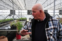 Uzi Cairo, imprenditore agricolo