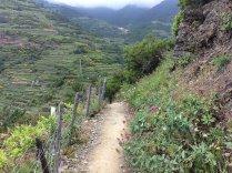 Cinque Terre vademecum dell'escursionista
