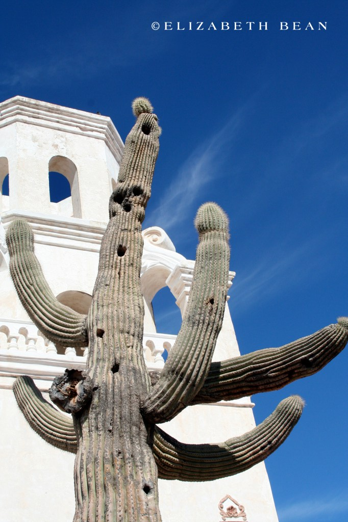 012707 Tucson 17