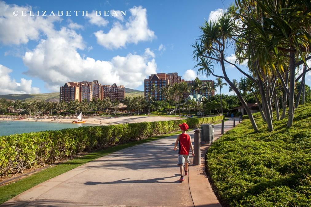 100615 Hawaii 19