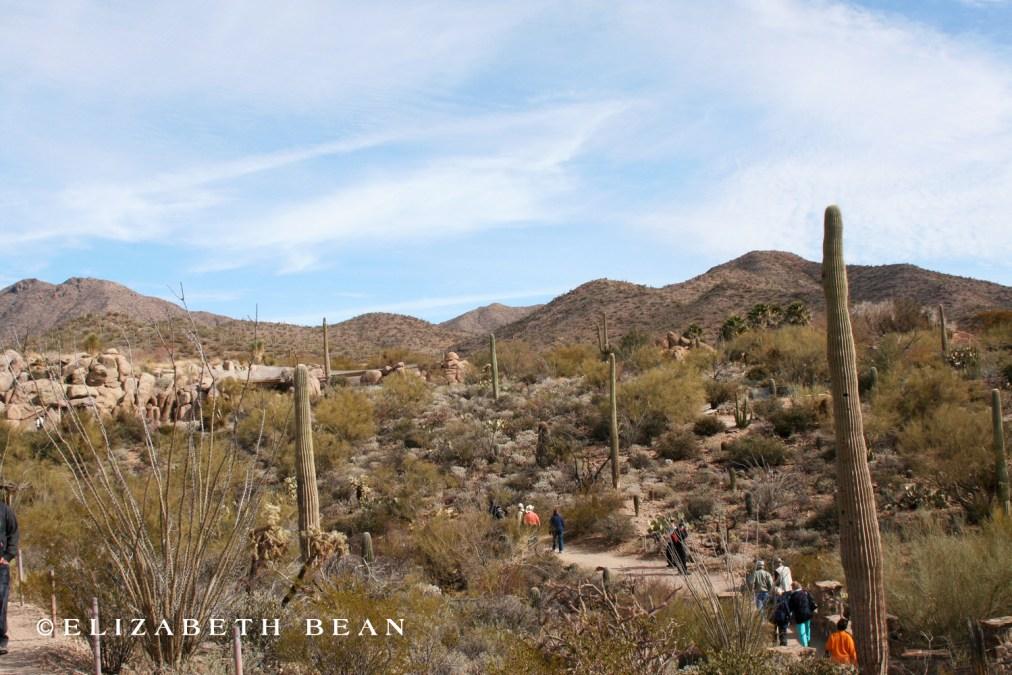 012807 Tucson 16