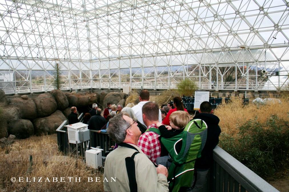 022611 Biosphere 20